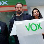 Un ganador de 'OT', contra Vox: