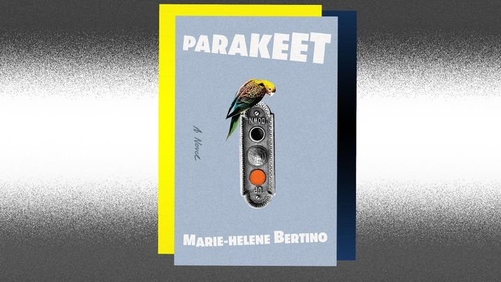 """""""Parakeet"""" asks how we reconstruct a personal geography after trauma, how we assemble those elusive fragments int"""