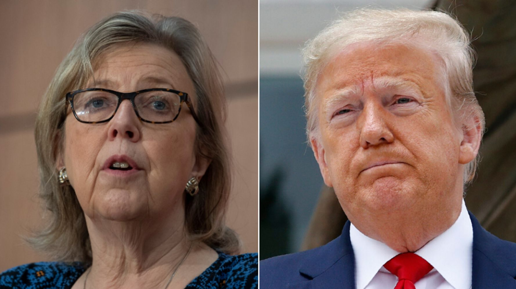 Elizabeth May Wants Canada To Accept U.S. Asylum Seekers Now That Country 'No Longer Safe'