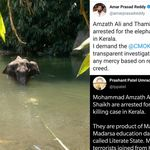 Kerala Elephant Death: Trolls Peddled Fake Claims Of Muslim Men's