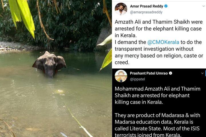 Kerala elephant's death