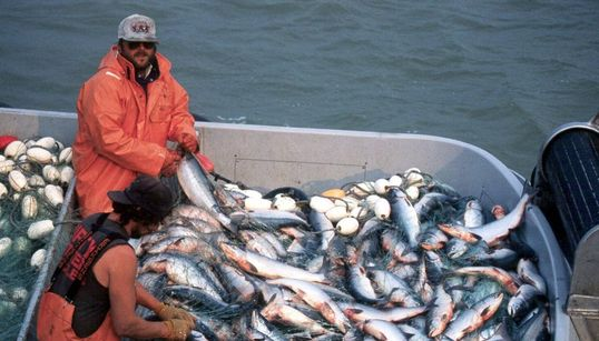 Alaska's Rural Fishing Communities Are Now On The Front Lines Of