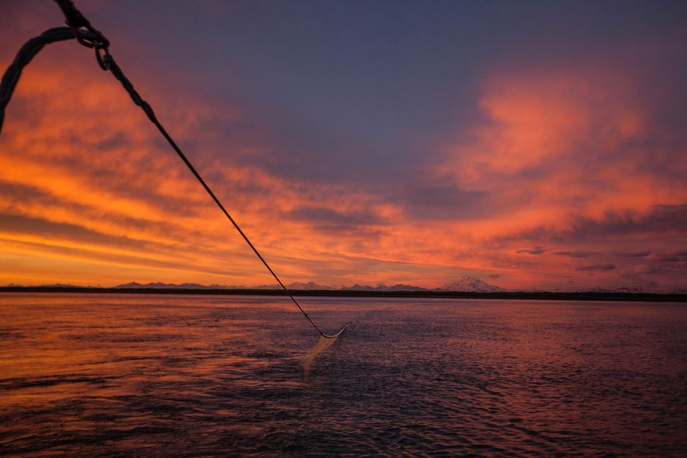 "Fisherman Nels Ure writes: ""The southernmost district in Bristol bay, Ugashik. This is where the majority of my now decade in"