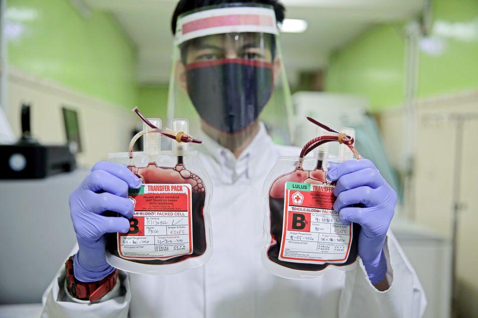 Com a crise provocada pelo surto do novo coronavírus, os hemocentros de todo o mundo estão...