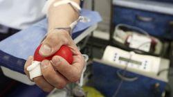 Um mês após STF derrubar restrição, homens gays ainda são impedidos de doar sangue no