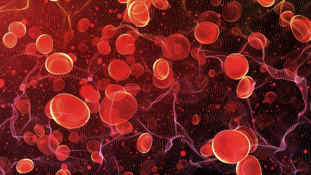 Red blood cells in travel an