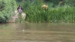 Buscan a un cocodrilo del Nilo avistado en un pueblo de