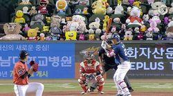 관중석 채운 인형들 본 미국 야구 팬들