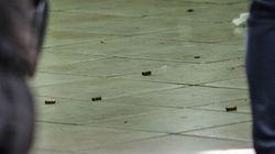 Ζάκυνθος: Μαφιόζικη επίθεση με «βροχή» από πυρά σε ζευγάρι μέρα