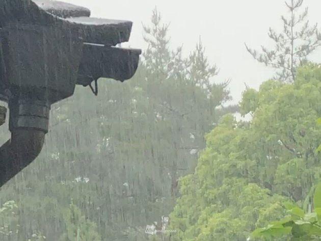 【大雨に警戒】九州で激しい雨 週末にかけては広範囲で