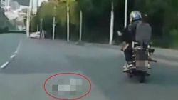 안전장치 없이 강아지 태우고 오토바이 질주한 운전자