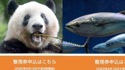 上野動物園と葛西臨海水族園の予約方法は?6月23日に再開