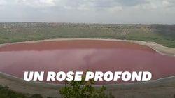 En Inde, ce lac bleu turquoise est devenu rose et personne ne sait
