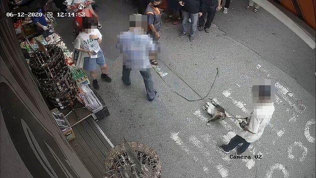 12일 오후 폐회로티브이(CCTV)에 찍힌 당시 상황. 목줄에 고양이가 걸려있고, 고양이가 몸부림을 치면서 목줄이 더