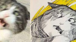펜으로 그린 '망한 고양이 사진대회' 출품작들