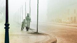 Lo que significa 'La sombra del viento' de Carlos Ruiz Zafón para la literatura