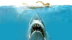 El tiburón sigue