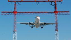 L'ACIA enquête sur la mort de 38 chiots à bord d'un avion de