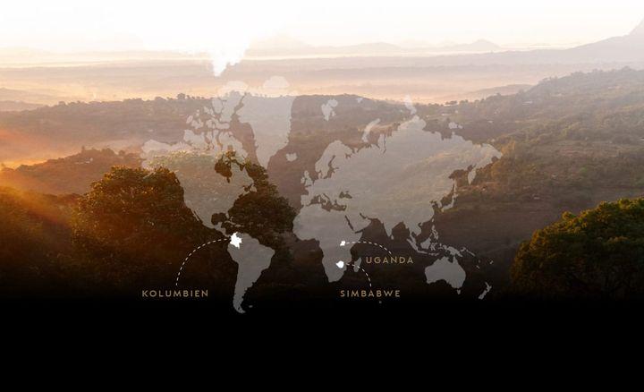 리바이빙 오리진 프로그램이 실시된 콜롬비아, 짐바브웨, 우간다