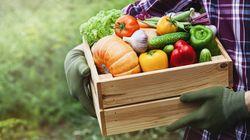 ΑγροΟικόΠολις: Σύμπραξη παραγωγών - καταναλωτών για αγορές «απευθείας από το