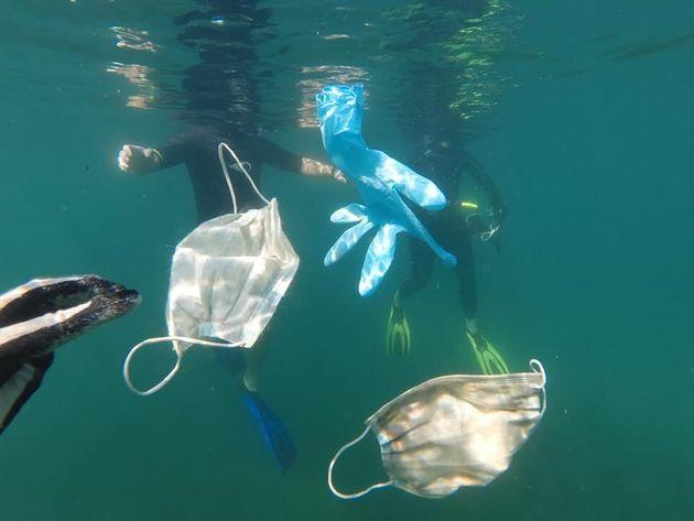 코로나19 사태 이후 바다에 버려진 마스크와 일회용
