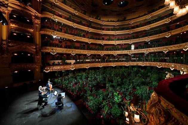 특별히 초청된 관객들은 차분하게 공연을 즐겼다.바르셀로나, 스페인. 2020년