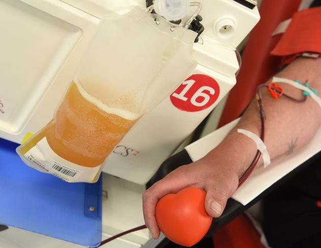 A representative photo of a man donating blood plasma at a blood donation