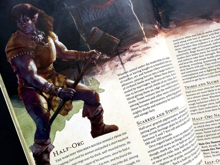 "A half-orc, as depicted in the fifth edition of D&D ""Player's Handbook."""