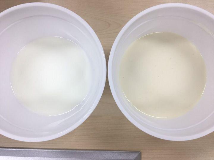 왼쪽이 그냥 우유, 오른쪽이 첵스 파맛이 우러나온 우유.