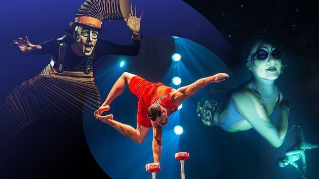 Espectáculo del Circo del
