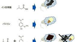 くさい靴下+バニラ=チョコ?の香りがする謎...。九州大学の研究チームが仕組みを解明