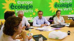 Appunti e insegnamenti dall'affermazione dei Verdi in