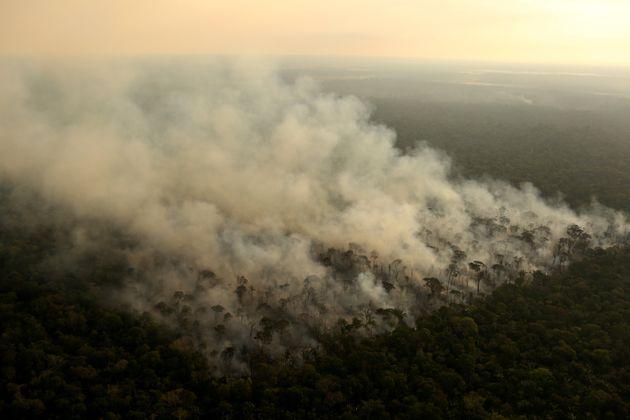 Focos de incêndio aumentaram na Floresta Amazônica e atingiram nível mais alto em 13