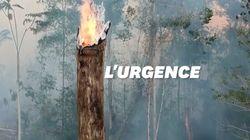 Terrible augmentation des incendies dans la forêt amazonienne au