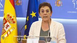 Bildu pide al Congreso anular la votación que el PSOE forzó para recular sobre la reforma