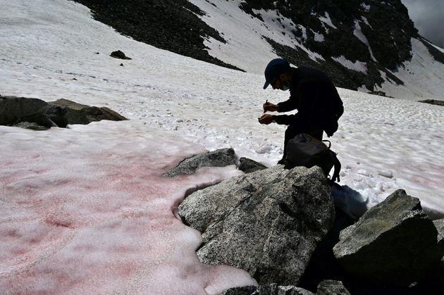 Ροζ οι ιταλικές Άλπεις - Πού οφείλεται και γιατί ανησυχούν οι