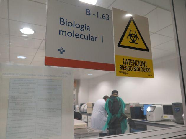 El laboratorio de virologia del