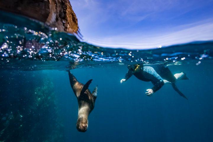 Snorkelling off Santa Cruz Island.