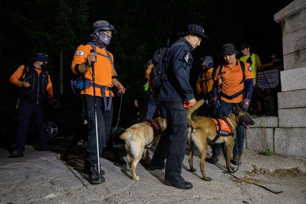 Des équipes de recherche dans le parc de Waryong, où le maire a été vu pour...