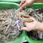 Coronavirus en gambas congeladas: China suspende la importación de paquetes procedentes de