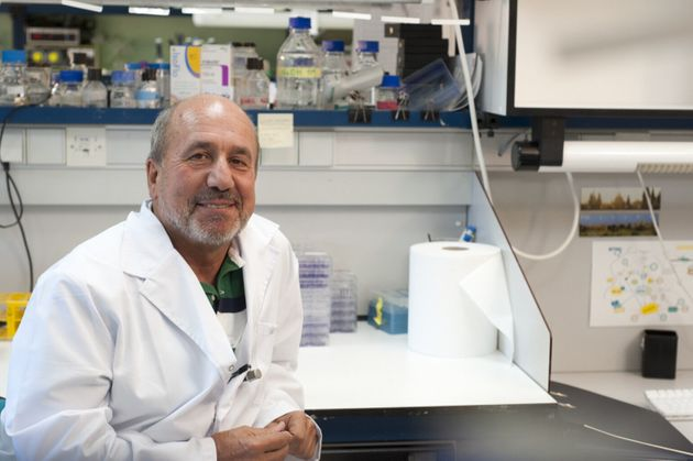 El investigador Mariano Esteban en su