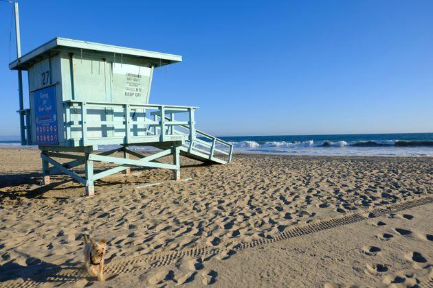 La Californie ordonne le reconfinement: fermeture des restaurants, coiffeurs, cinéma... (photo...