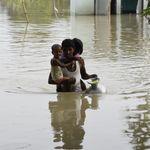Assam Floods 2020: At Least 85 Dead, 95% Of Kaziranga