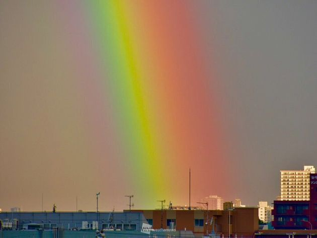 虹は7色とは限らないって知ってた?