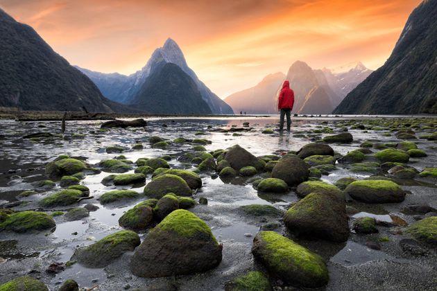 Πώς η Νέα Ζηλανδία έγινε παγκόσμιο καταφύγιο για την
