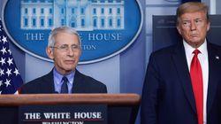 Qué pasa con Fauci, el 'Simón estadounidense' al que Trump quiere