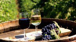 I vini dell'Alto Adige e il valore aggiunto di comunicare