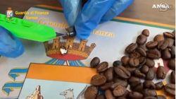 Cocaina nei chicchi di caffè, la scoperta della GdF a