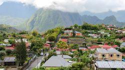 La contamination progresse à la Réunion par importation de