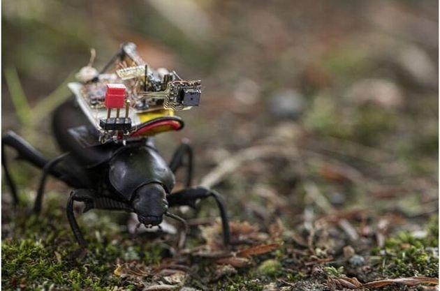 ΗΠΑ: Ερευνητές δημιούργησαν την μικρότερη ρομποτική ασύρματη κάμερα που τοποθετήθηκε σε